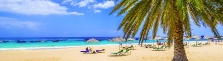 Destinations l'honneur : Iles Canaries